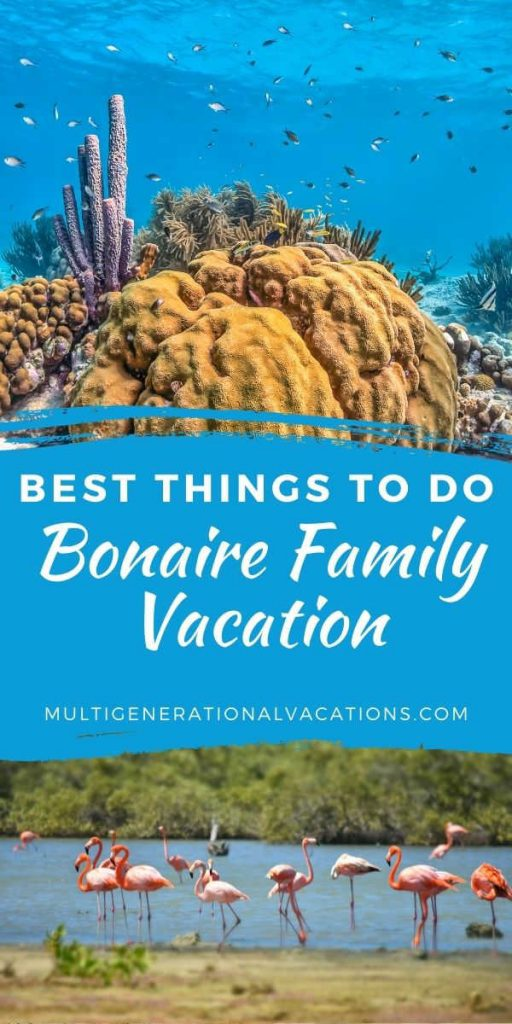 Bonaire Vacation with All Ages-Multigenerational Vacations