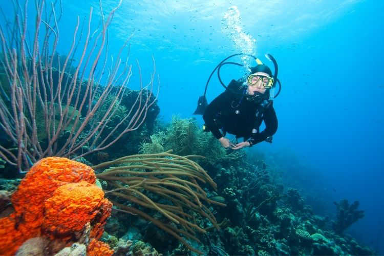 Bonaire scuba diving-Multigenerational Vacations