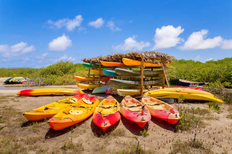 Kayak mangrove Bonaire vacation-Multigenerational Vacations