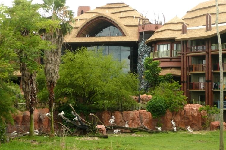 Animal Kingdom Lodge Orlando Florida resort