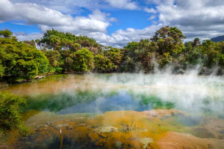 Hot springs Rotorua